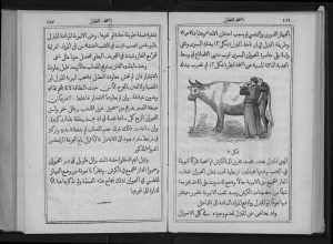veteriner kitabı2